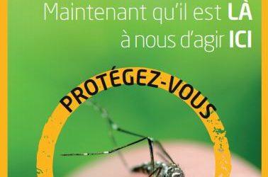 Ensemble, limitons la prolifération du moustique tigre